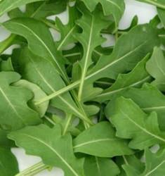 Rukola setá - bio - semena Rukoly - 50 ks