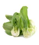 Asijská zelenina